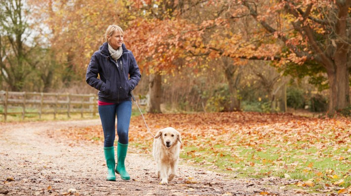 woman on autumn walk with labrador